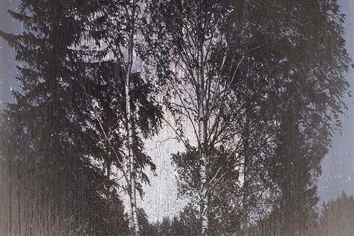 Matthew Brandt. Orphic Forest